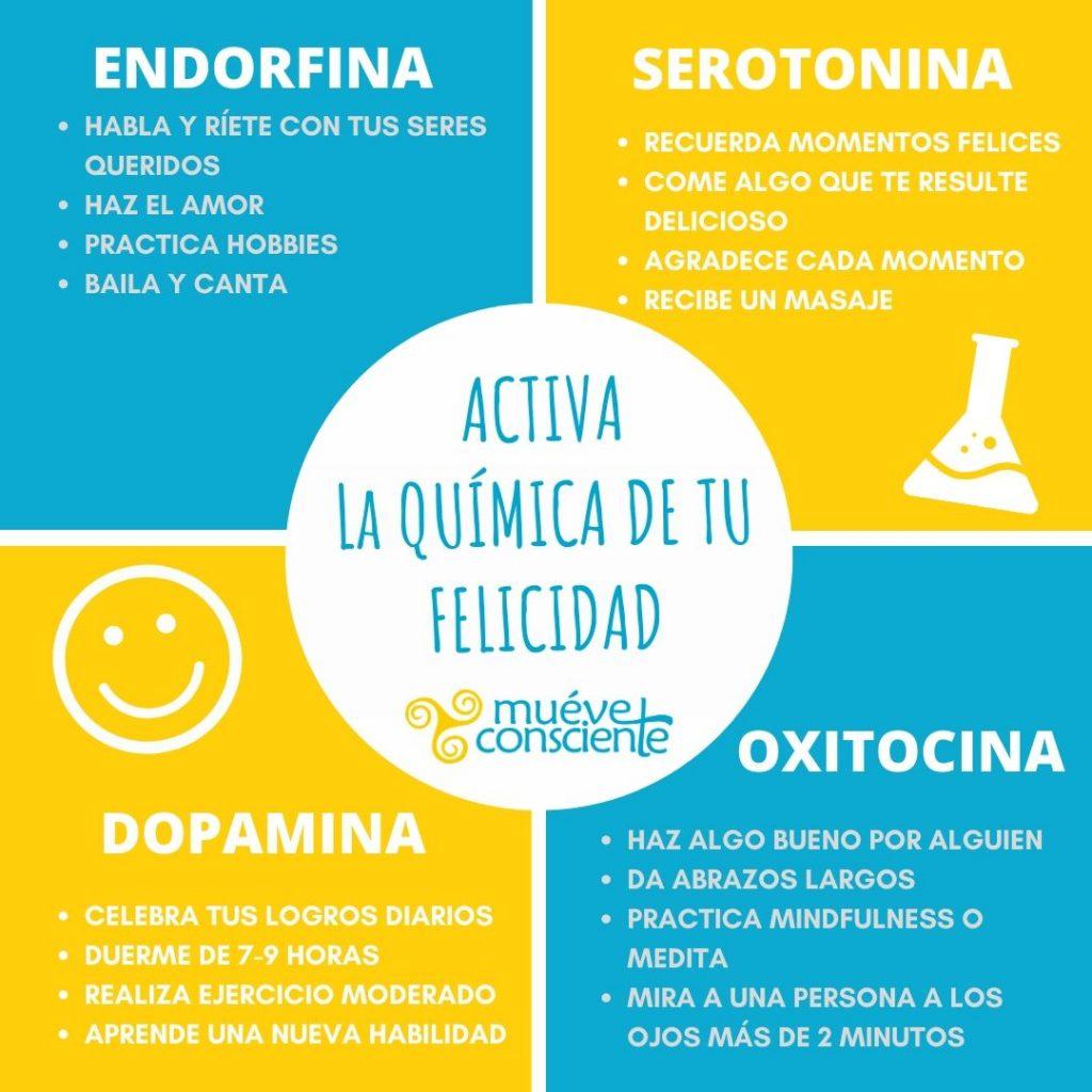 quimicos de la felicidad